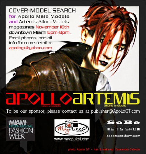 cover_model_search_2010