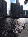 downtownmiamiriverwalkfestival111012-109
