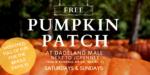 Dadeland Mall Pumpkin Patch 9/26/20