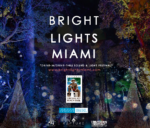 Bright Lights Miami --- A Drive-In, Drive Thru Lights Festival 11/20/20 - 1/10/21